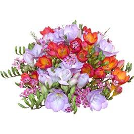 clipart blomsterranker